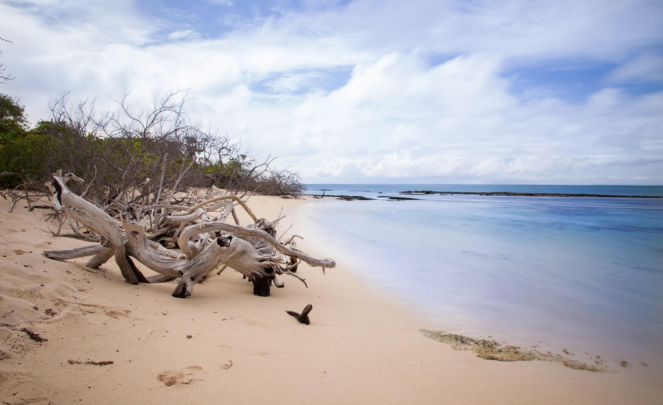 beach-petiteterre-guadeloupe-france-paradise-island-caribbean-nobody